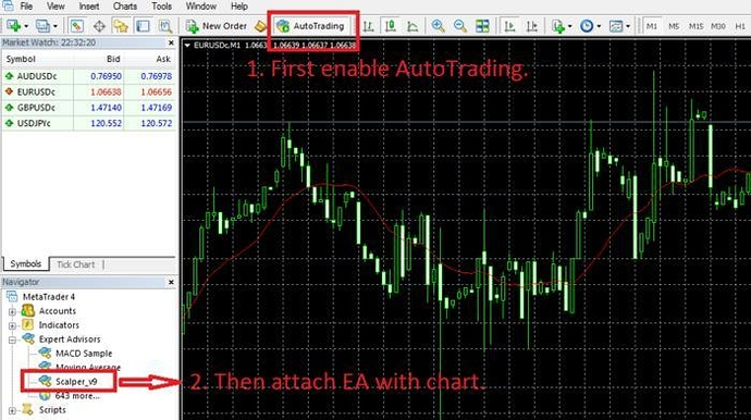 spread betting forex tips forum