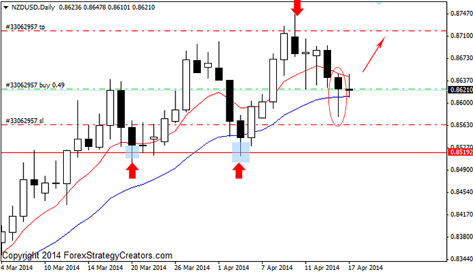 Price acrion daily forex
