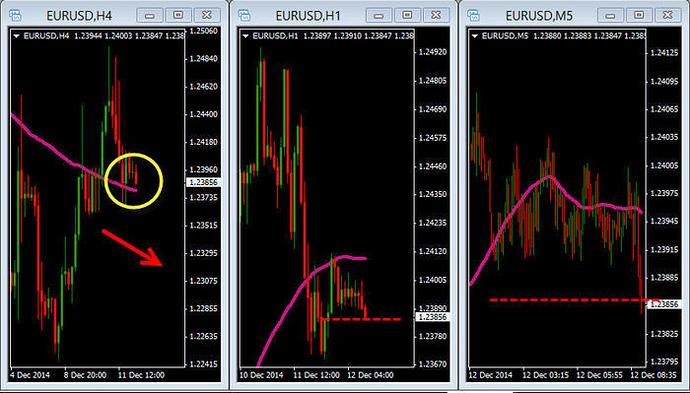 3 ducks trading system babypips
