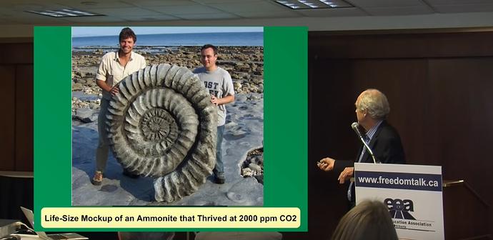 4 ammonite 2000 ppm CO2