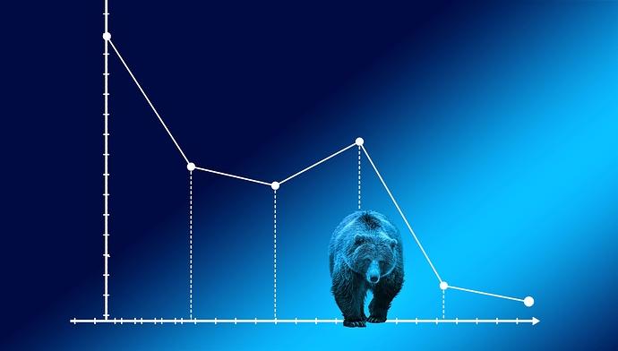 bear-market-4159033 (2)