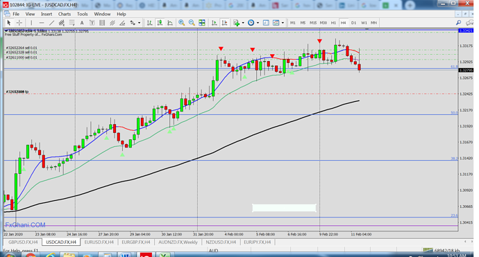 02112020 USDCAD 4H