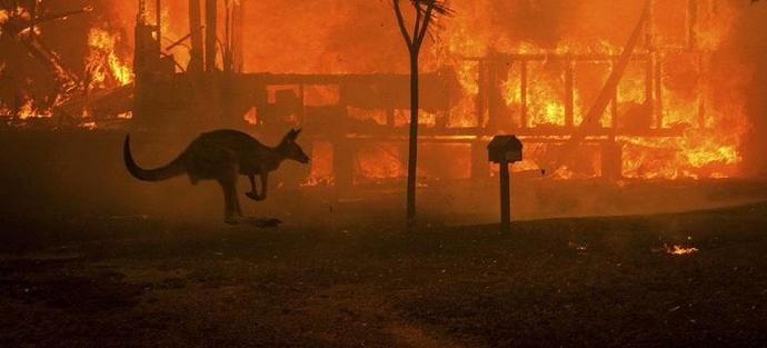 Aussie wildfires - Jan 2020