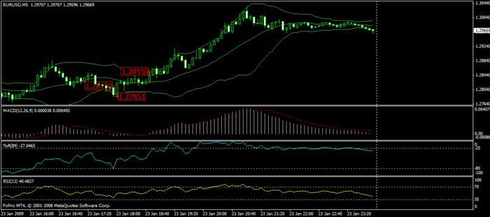 40 pips daily forex