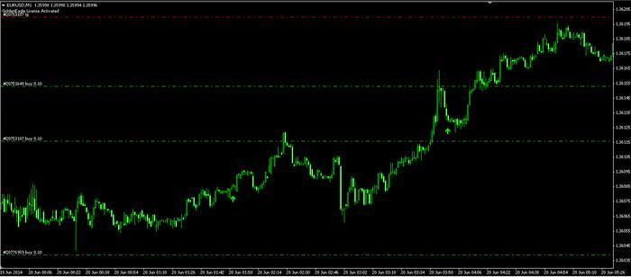 Forex 80 win