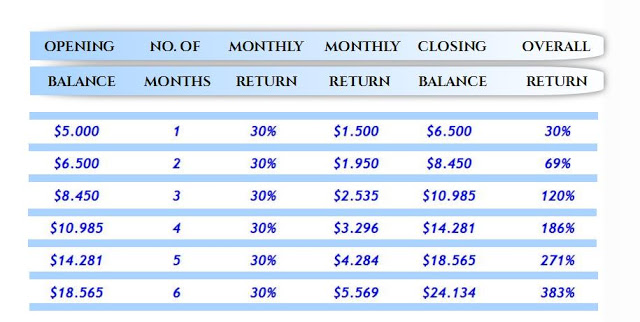 WEB FRONT 30% MONTHLY RETURN 6 MONTHS 383%