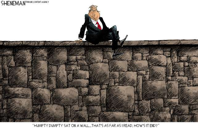 Trump wall cartoon - 14