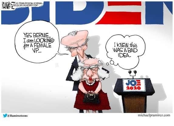 cartoon - Biden - 30