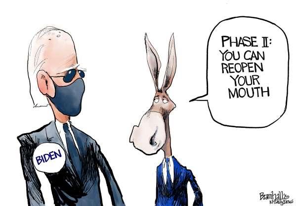 cartoon - Biden - 45