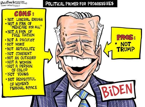cartoon - Biden - 34
